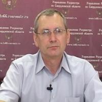 Виктор Лузин, нач. отдела кадастровой оценки недвижимости Управления Росреестра