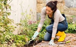 Новый закон о садоводстве с 1 января 2019 года — Журнал кадастрового инженера