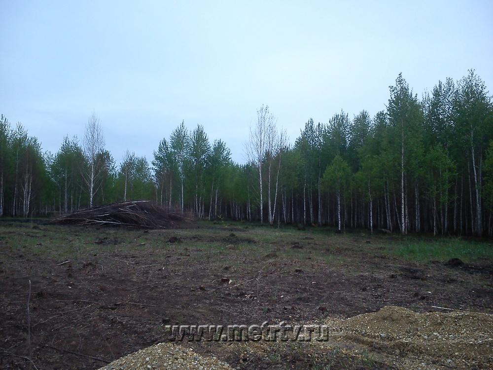 с. Клеопино, ул. Д/П Рублёво (Каслинский район) - фото земельного участка (2)