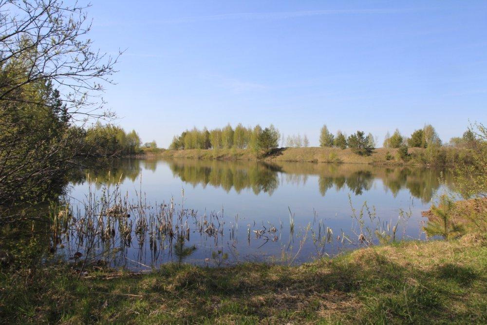 с. Мезенское (городской округ Заречный) - фото земельного участка (2)