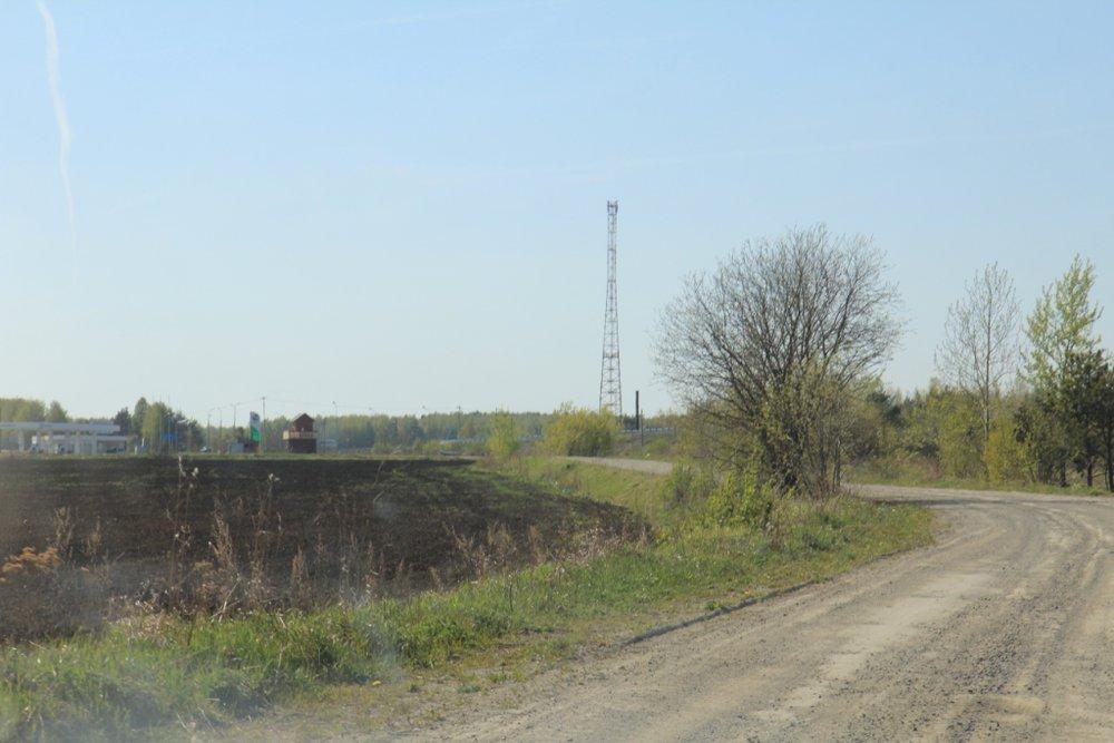с. Мезенское (городской округ Заречный) - фото земельного участка (5)