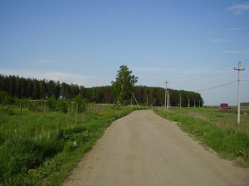 поселок городского типа Белоярский, ул. Зеленая, 101А (городской округ Белоярский) - фото земельного участка (2)