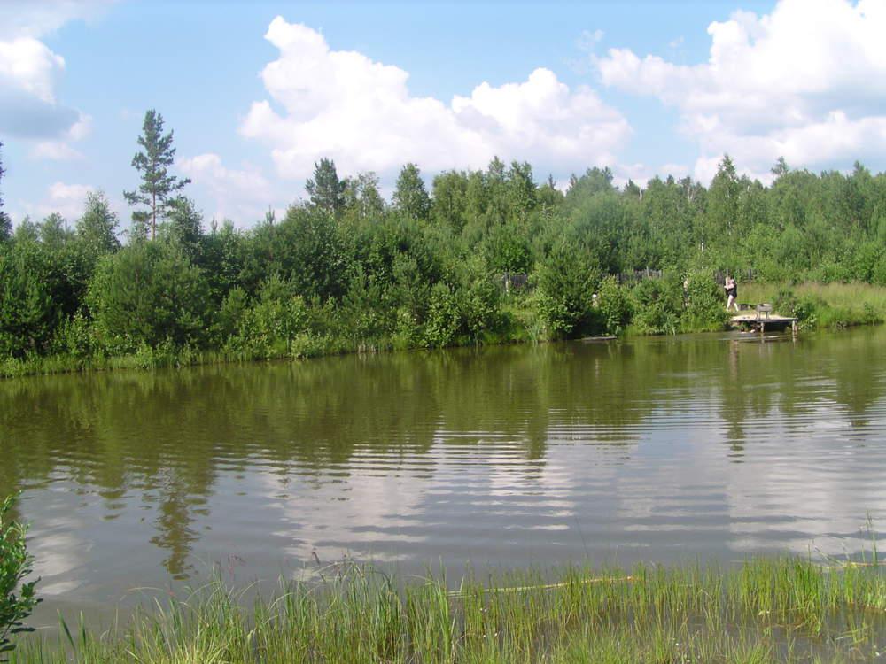 п. Ключевск, СНТ №85 (городской округ Березовский) - фото сада (1)