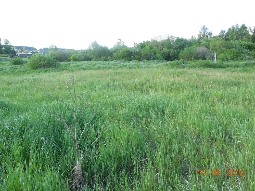 поселок городского типа Белоярский, ул. Заболотная, 96 (городской округ Белоярский) - фото земельного участка (1)
