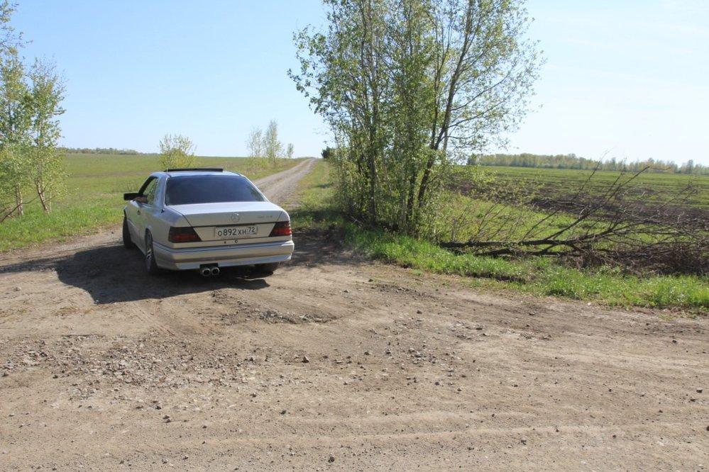 с. Мезенское (городской округ Заречный) - фото земельного участка (3)