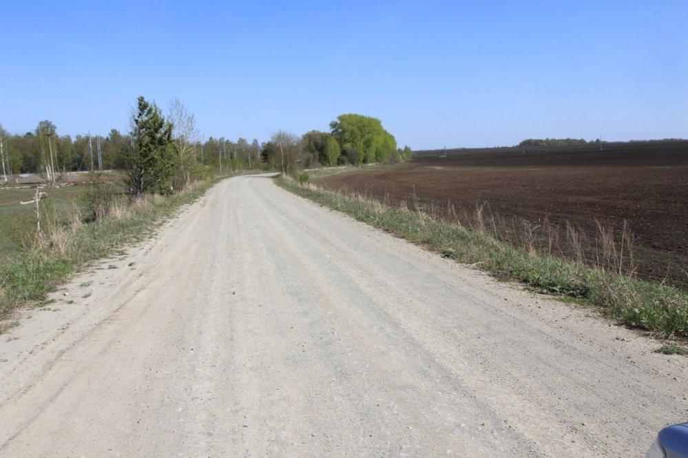 с. Мезенское (городской округ Заречный) - фото земельного участка (4)