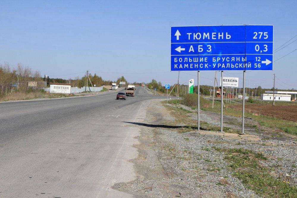 с. Мезенское (городской округ Заречный) - фото земельного участка (8)
