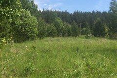 с. Мезенское (городской округ Заречный) - фото земельного участка