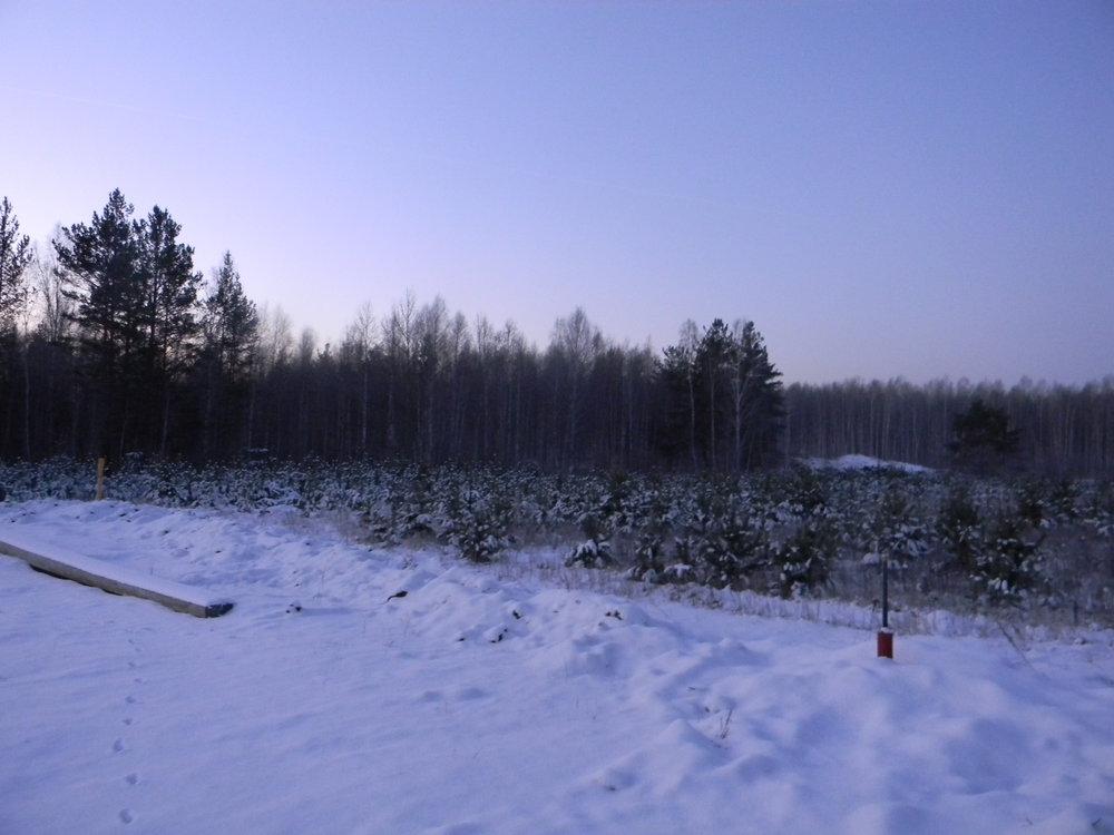 к.п. Становлянка, ул. Янтарная (городской округ Березовский) - фото земельного участка (2)