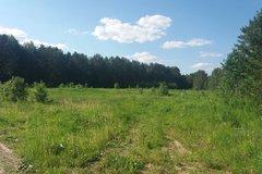 с. Кашино (городской округ Сысертский) - фото земельного участка