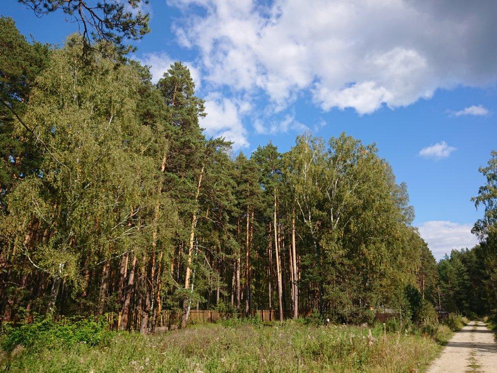 г. Сысерть, ул. Ясное, 10 - фото земельного участка (1)