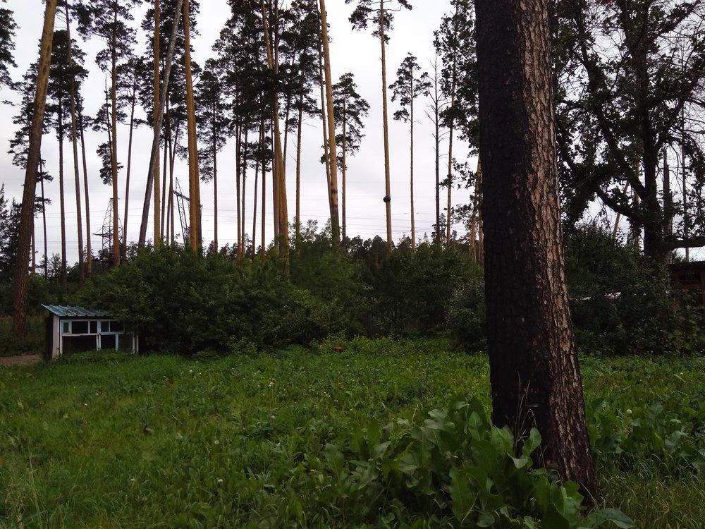 Екатеринбург, ул. Опытная, 5 (М.Исток) - фото дома (5)