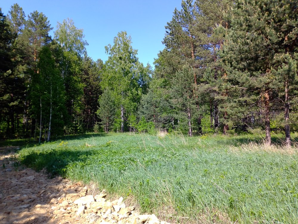 с. Малобрусянское, к.п.Марципан, 11 (городской округ Белоярский) - фото земельного участка (7)