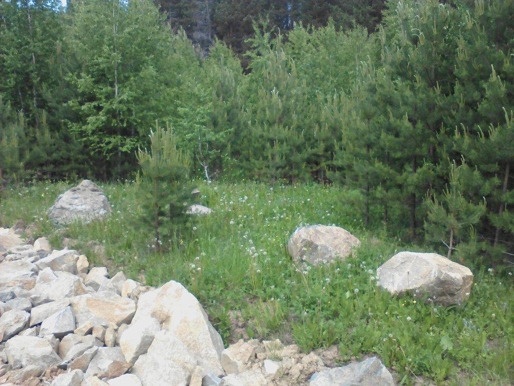 с. Малобрусянское, ул. п.Марципан, 55 (городской округ Белоярский) - фото земельного участка (1)