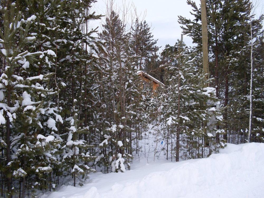 с. Малобрусянское, ул. п.Марципан, 55 (городской округ Белоярский) - фото земельного участка (5)