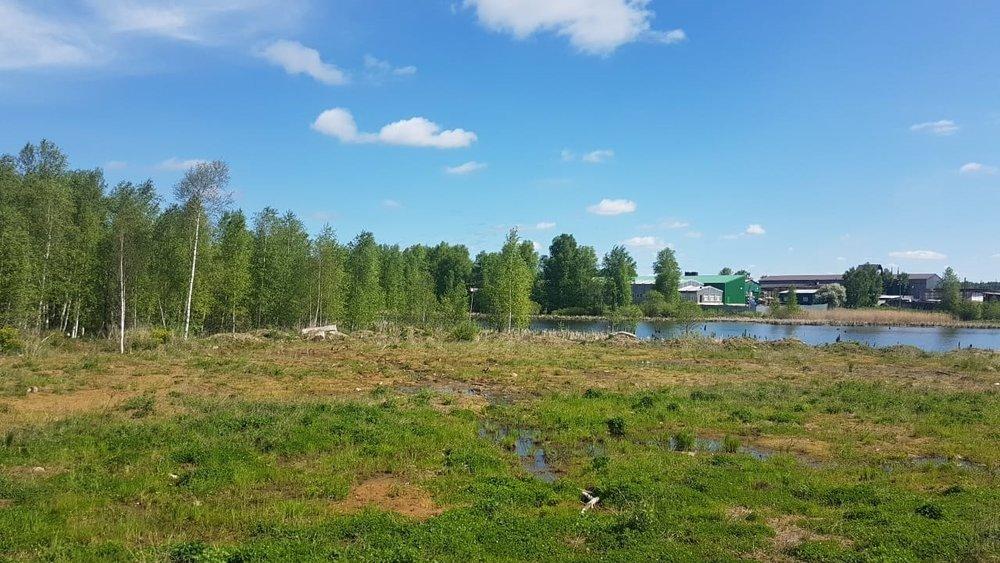 п. Балтым, ул. Восточная, 15 (городской округ Верхняя Пышма) - фото земельного участка (1)