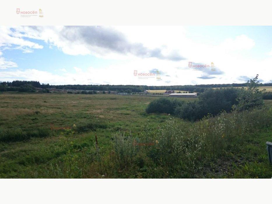 р.п. Верхнее Дуброво (городской округ Верхнее Дуброво) - фото земельного участка (3)