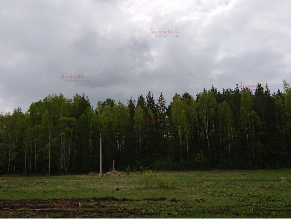п. Мурзинка, ул. Ленина (городской округ Среднеуральск) - фото земельного участка (7)
