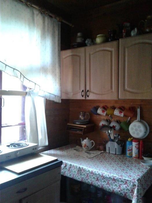 Екатеринбург, СНТ Авиатор (Кольцово) - фото сада (6)