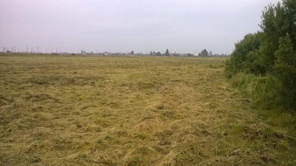 с. Клеопино, ул. 1 мая (Каслинский район) - фото земельного участка (5)