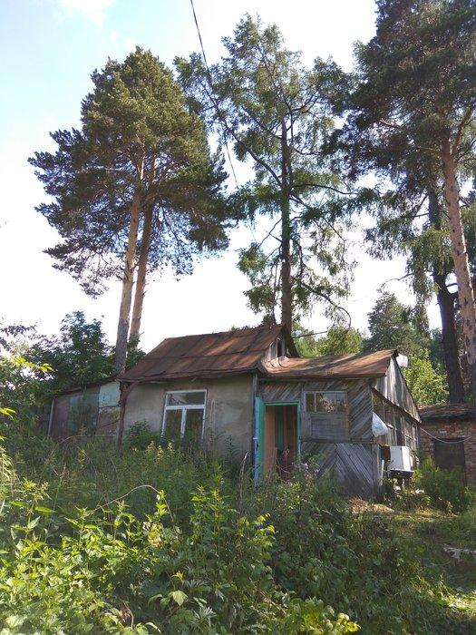 Екатеринбург, ул. Зеленый Остров, 19 (ВИЗ) - фото дома (6)