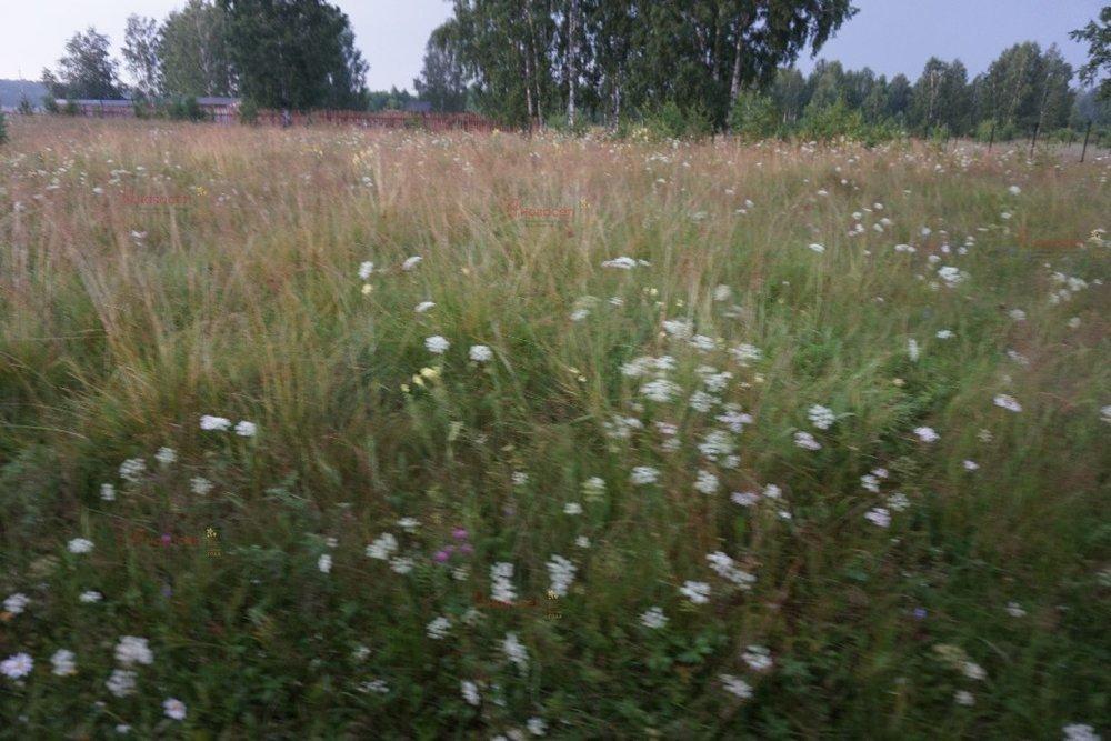 п. Монетный, ул. Олимпийская, 102 (городской округ Березовский) - фото земельного участка (1)