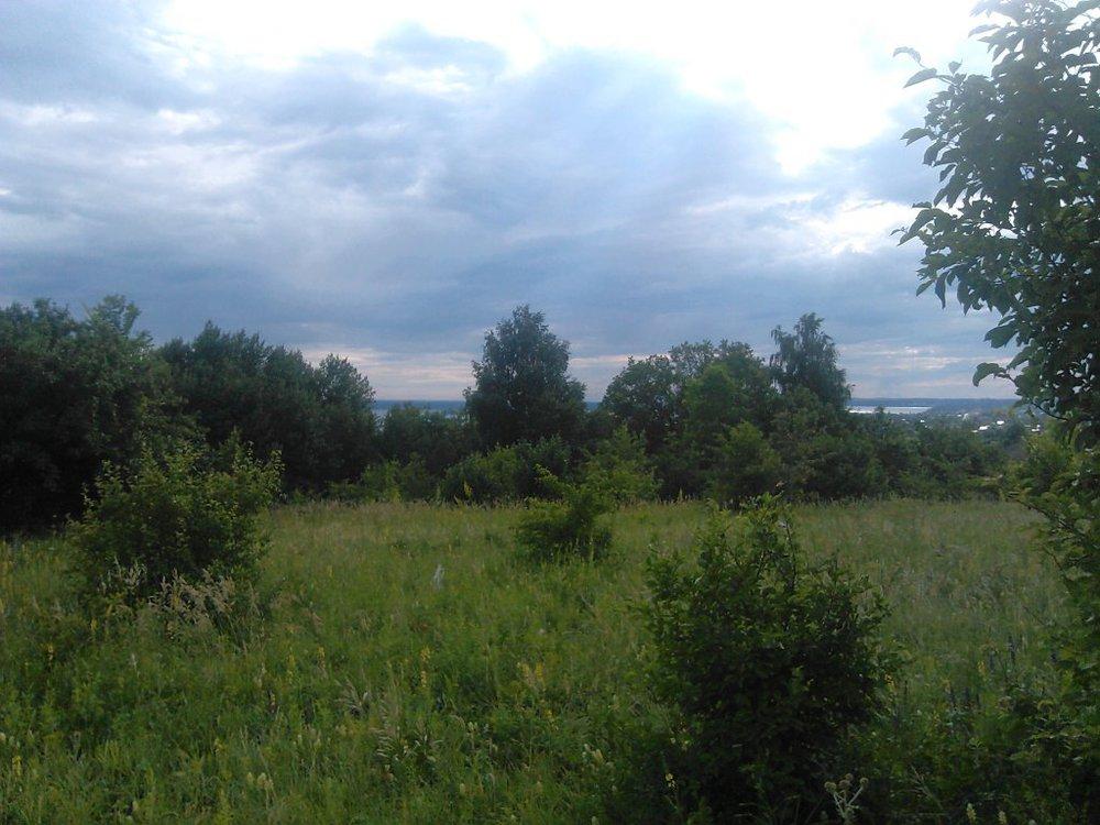 п. Калиново, СНТ Заря-2 (городской округ Невьянский) - фото сада (1)