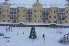 Екатеринбург, ул. Очеретина, 3 - фото квартиры