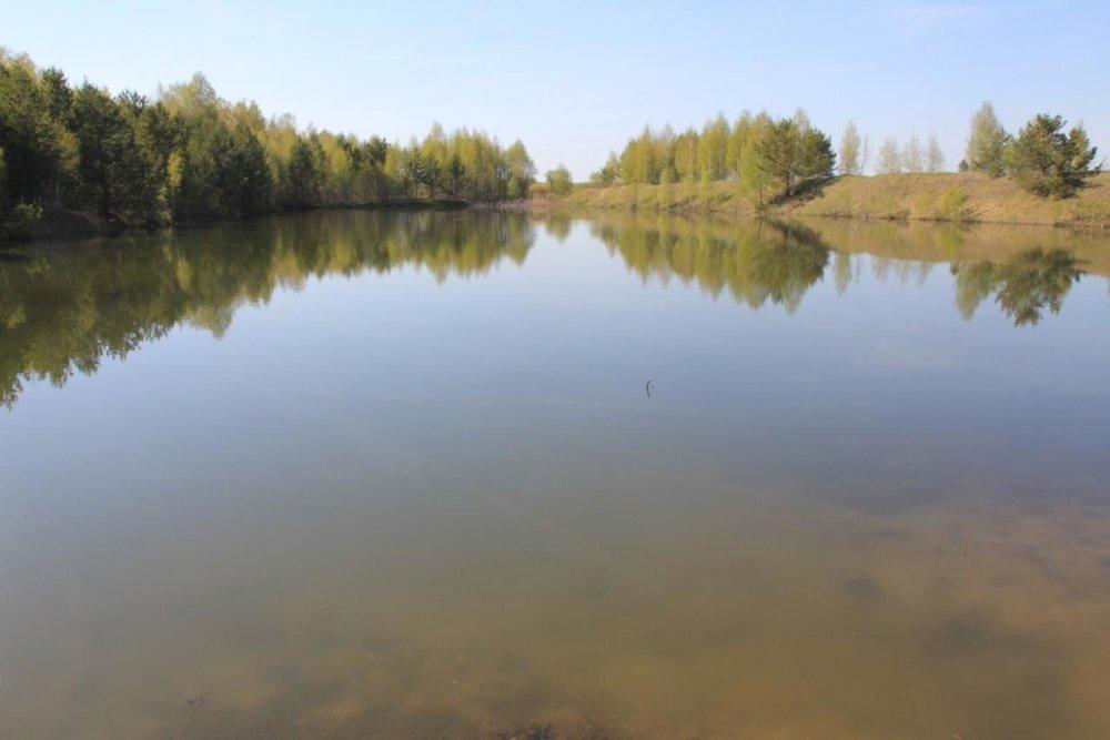 с. Мезенское (городской округ Заречный) - фото земельного участка (1)