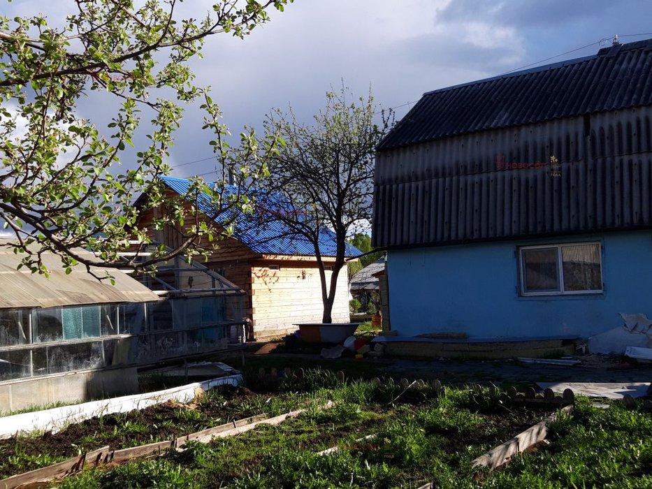 г. Среднеуральск, НСТ №6 Клен (городской округ Среднеуральск) - фото сада (1)