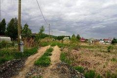 Екатеринбург, СНТ Родничок - фото сада