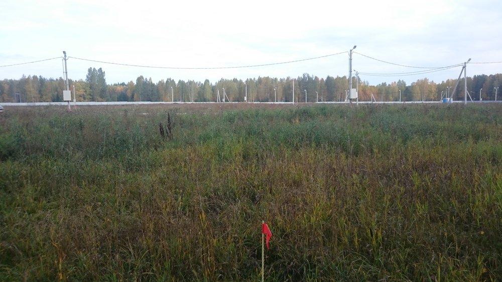 к.п. Заповедник, ул. парк Совята, 16 (городской округ Сысертский, с. Кашино) - фото земельного участка (1)