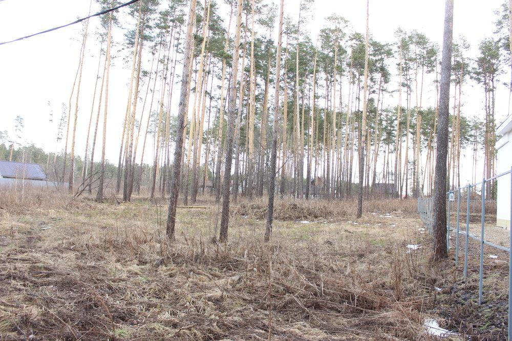 к.п. Усадьба (городской округ Белоярский) - фото земельного участка (1)