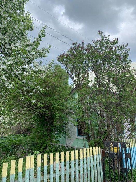 Екатеринбург, СНТ Карасики - фото сада (1)