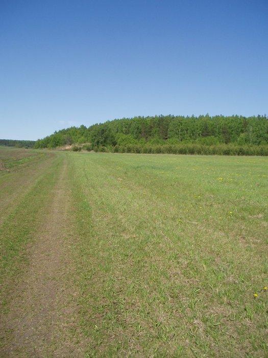 п. Бобровский (городской округ Сысертский) - фото сада (1)