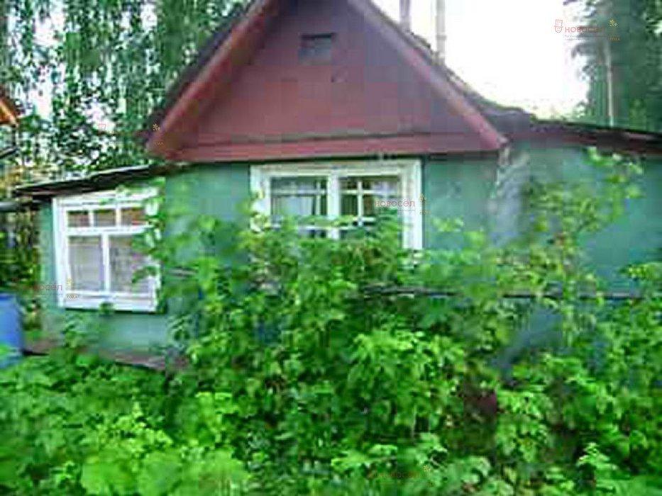 Екатеринбург, СНТ Учитель (Уралмаш) - фото сада (1)