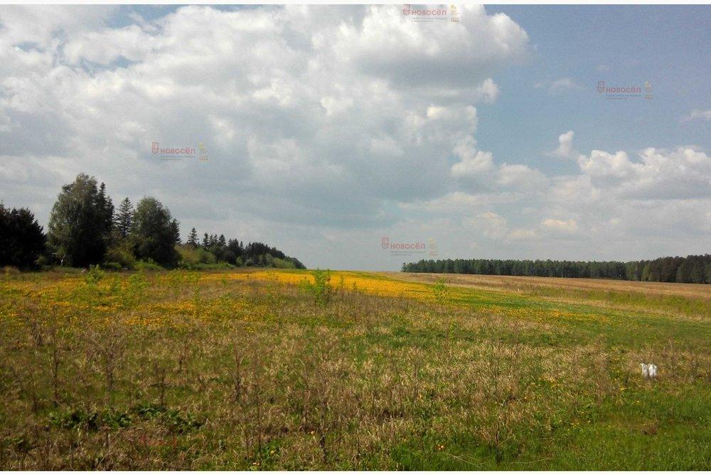 с. Большебрусянское (городской округ Белоярский) - фото земельного участка (1)