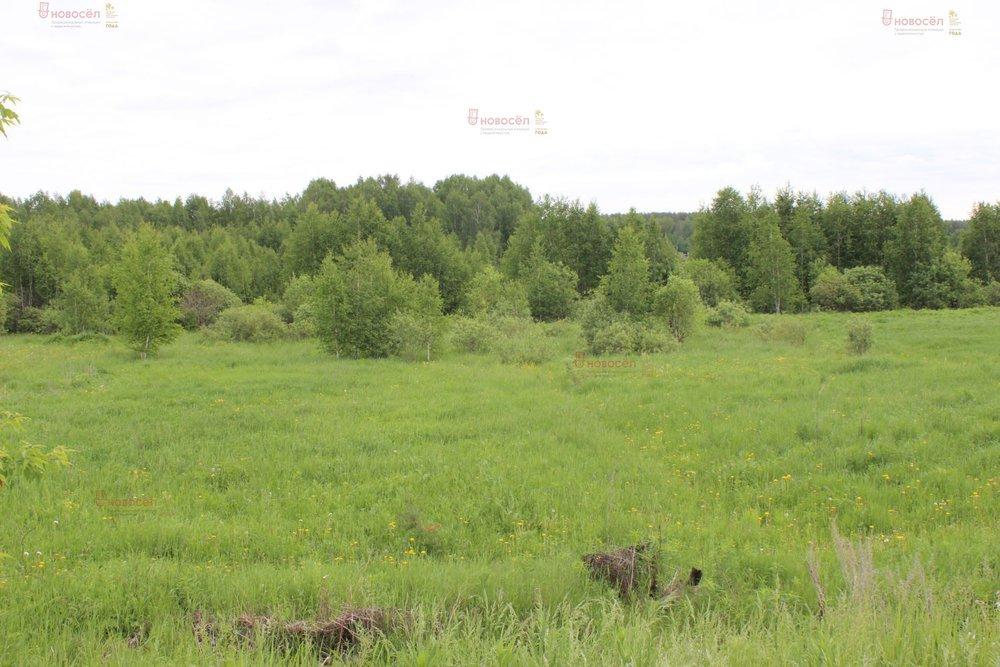 п. Монетный, ул. Болельщиков, 7 (городской округ Березовский) - фото земельного участка (1)