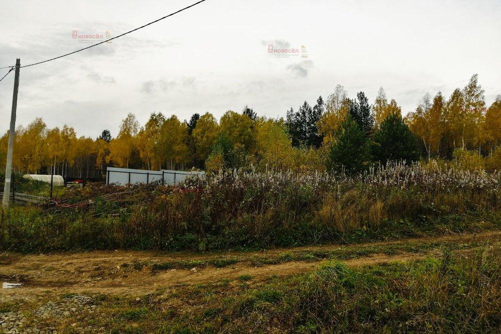 к.п. Добрый город (городской округ Полевской, с. Курганово) - фото земельного участка (1)