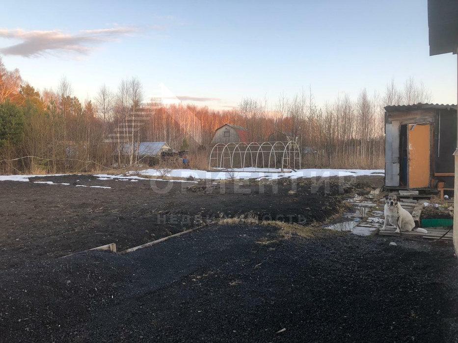 г. Полевской, СНТ Рябинушка (городской округ Полевской) - фото сада (5)