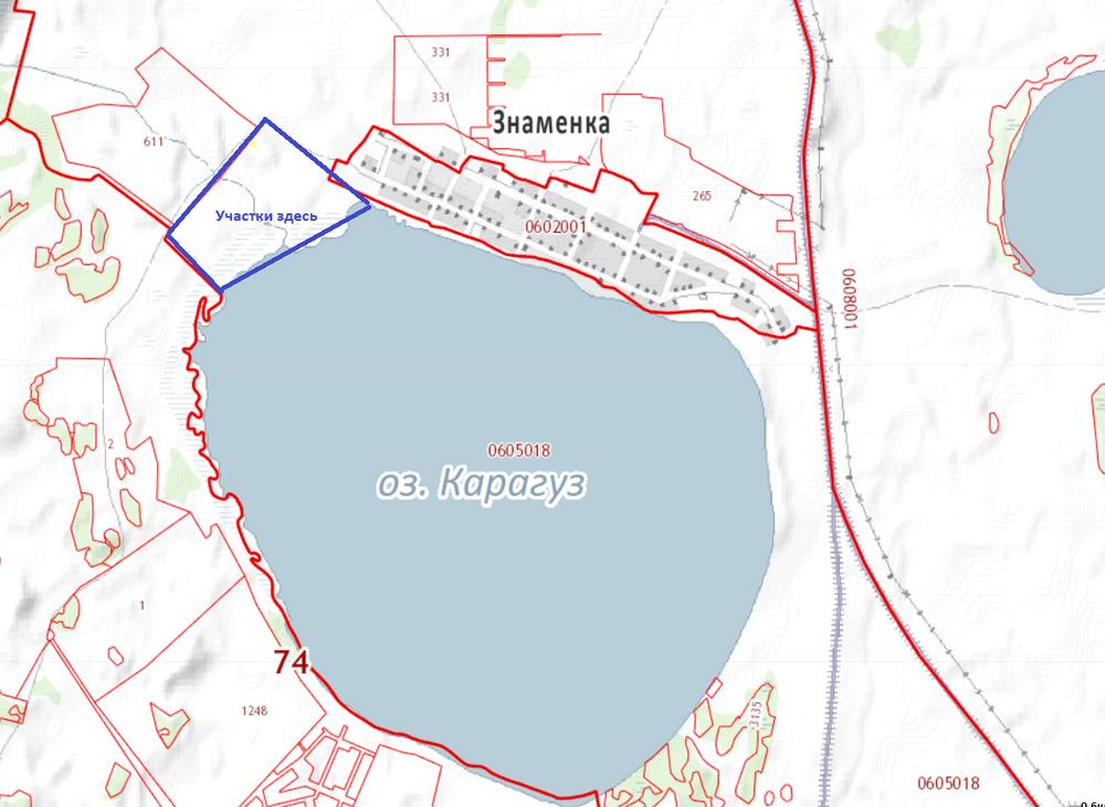 д. Знаменка, ул. Знаменская, 17 (Каслинский район) - фото земельного участка (1)