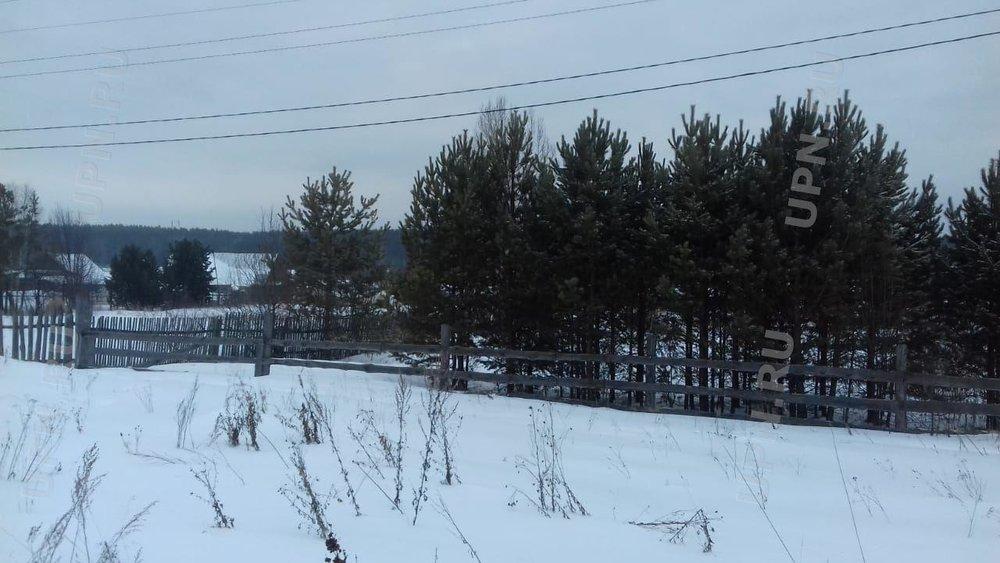 с. Черноусово, ул. Горная, 70 (городской округ Белоярский) - фото земельного участка (3)