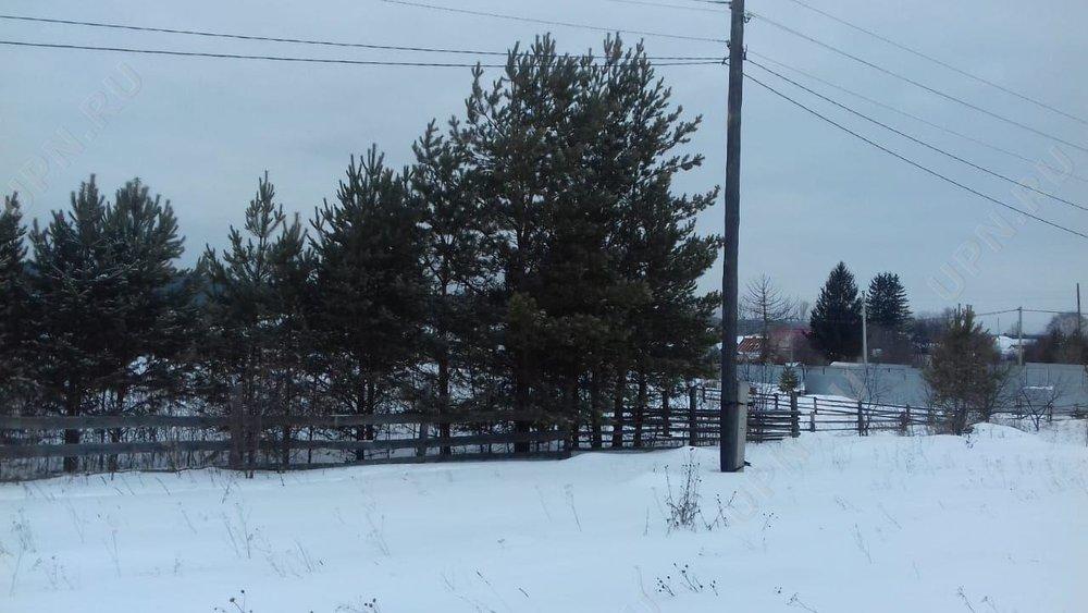 с. Черноусово, ул. Горная, 70 (городской округ Белоярский) - фото земельного участка (4)