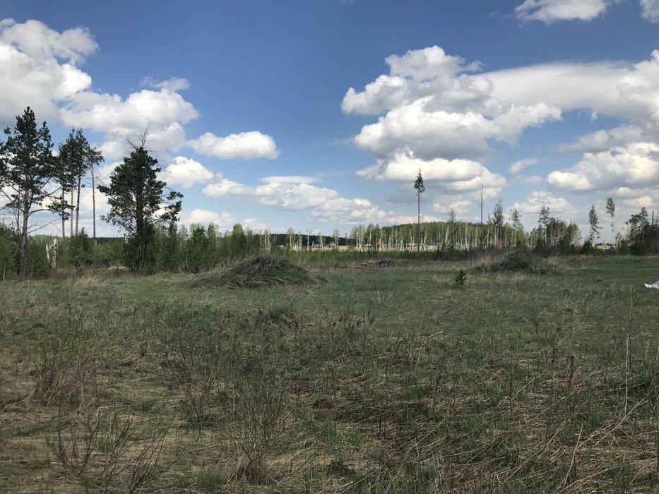 к.п. Балтымские дачи (городской округ Верхняя Пышма, п. Соколовка) - фото земельного участка (1)