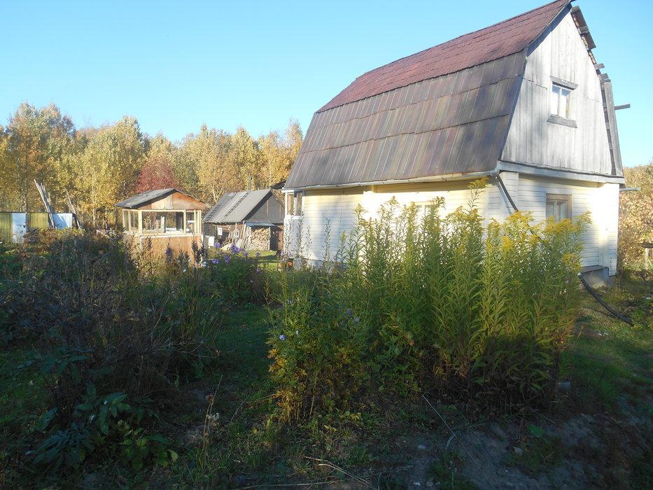 г. Ревда, СНТ Криогеник (городской округ Ревда) - фото сада (1)