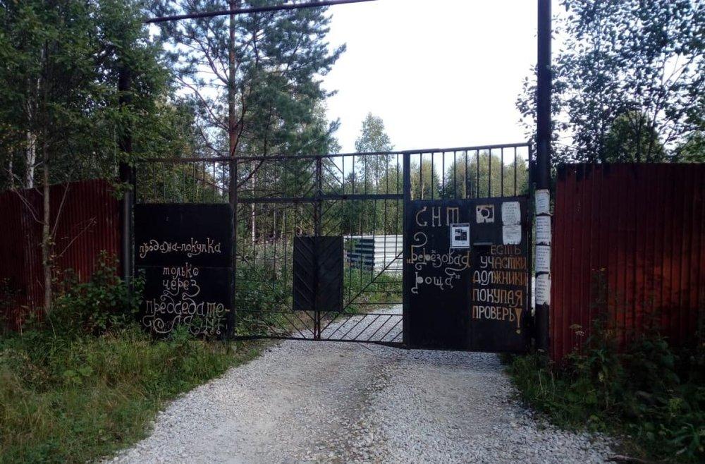 с. Курганово, ул. Ленина, (городской округ Полевской) - фото сада (1)
