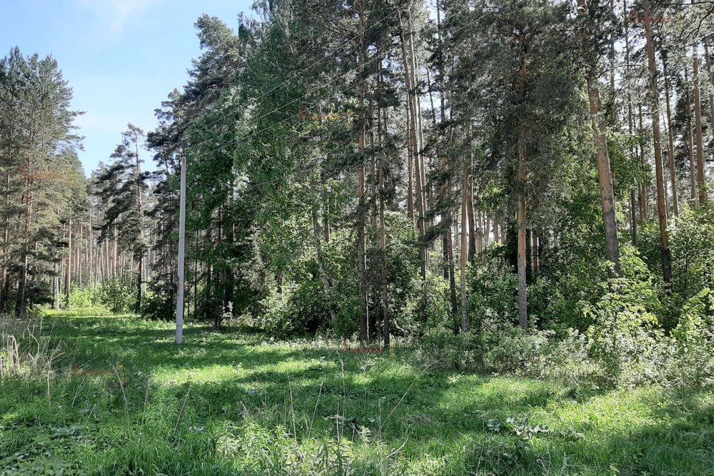 Екатеринбург, ул. Садовая (Горный щит) - фото земельного участка (1)