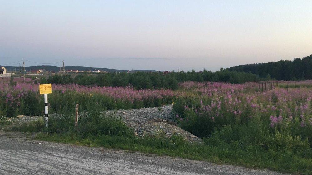 к.п. Солнечный (городской округ Полевской, с. Курганово) - фото земельного участка (1)