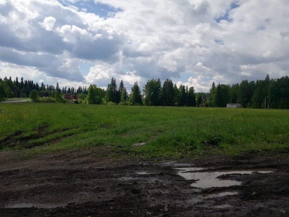 п. Краснояр, ул. Чистая, 6 (городской округ Ревда) - фото земельного участка (7)