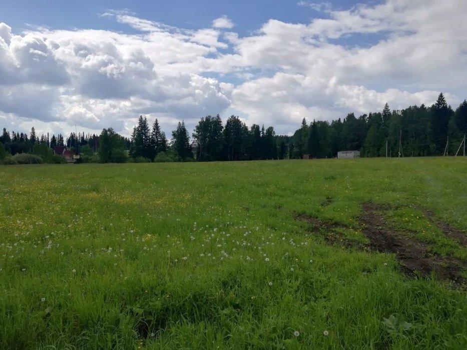 п. Краснояр, ул. Чистая, 6 (городской округ Ревда) - фото земельного участка (8)
